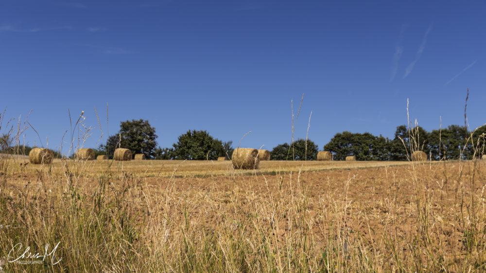 Field, Aveyron, France